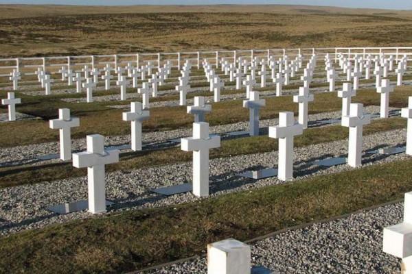 cementerio de darwin.jpg 1734428432