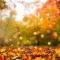 ¿Se anticipó la llegada del otoño a Santa Fe?