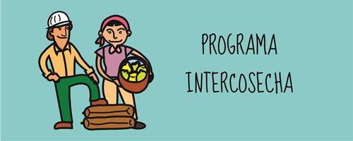 Pago del Programa Intercosecha
