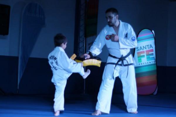 taekwondo 696x389