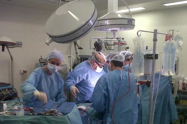 trasplante .jpg 1734428432